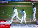 Cricket_3