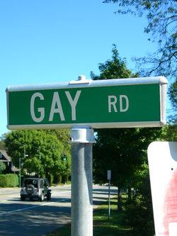 Gayroad_1